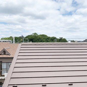 北側の眺望。お隣さんの屋根。