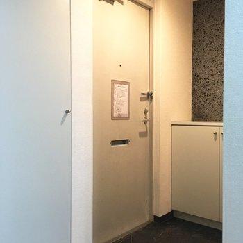 玄関部、右にシューズボックス、左にも収納。