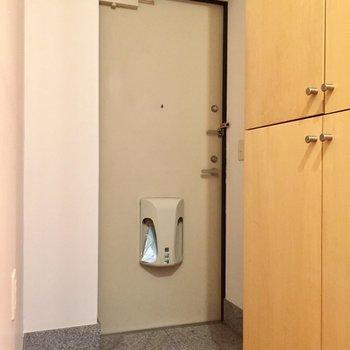 玄関は少し暗い印象(※写真は同間取り別部屋のものです)