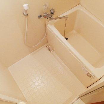 お風呂は一人分くらい。※写真は2階の同間取り別部屋のものです