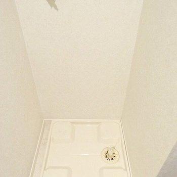 お向かいには洗濯パンが。(※写真は5階の同間取り、清掃前の別部屋です)