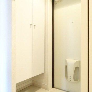 玄関はちょっとコンパクト。(※写真は5階の同間取り、清掃前の別部屋です)