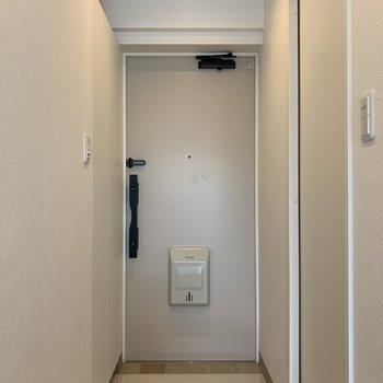 シンプルなポスト玄関。