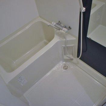 ノーマルのきれいな浴室。