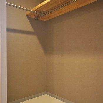 ウォークインクローゼットもこの広さ、、、!※写真は101号室のもの