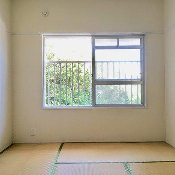 こちらは6帖の和室。日当たりバッチリですね。