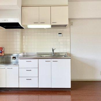 冷蔵庫は右手のスペースに。