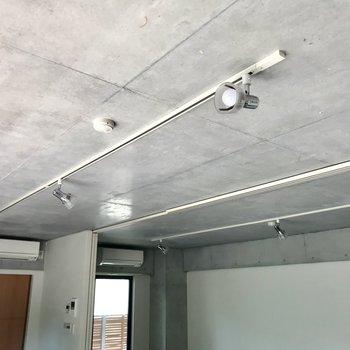 天井を見上げると、コンクリとライティングレール。雰囲気作りはバッチリです!