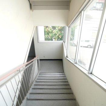 階段から緑が見えて、気持ちいですね◎