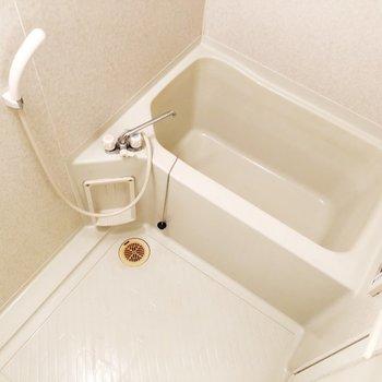 【上階】洗い場も広々としています※写真はクリーニング前のものです