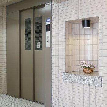 共用部、お花が飾られています♪エレベーターもありますよ!