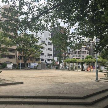 すぐ近くに公園あります。