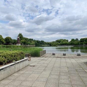 近くには公園もあります。