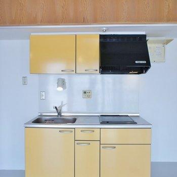 キッチンは壁に隠れていました※写真は同タイプの別室。