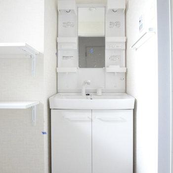 洗面台はドレッサータイプ!使いやすいんだよな!(※写真は2階の同間取り別部屋、清掃前のものです)