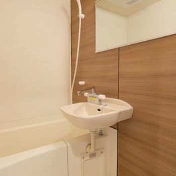 浴槽も驚くことに...こんなに贅沢な鏡面をご用意※写真は前回募集時のものです