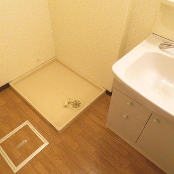 洗面脱衣所もしっかりと(※写真は4階の同間取り別部屋のものです)
