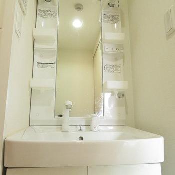 収納力のある洗面台(※写真は3階の同間取り別部屋のものです)