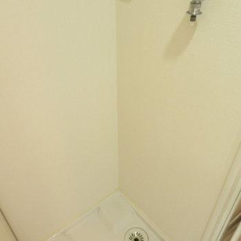 洗面台の後ろには洗濯機置き場が(※写真は3階の同間取り別部屋のものです)