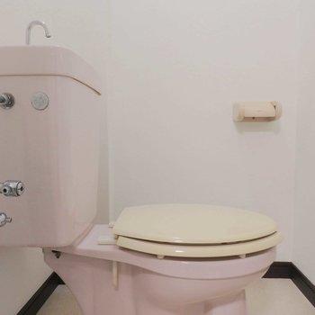 トイレは昔ながらのものです。(※写真は4階の同間取り別部屋のものです)