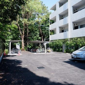 駐車場、駐輪場は緑豊かです。