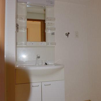 シャワーヘッドの洗面台*フラッシュ撮影です。(※写真は2階の同間取り別部屋のものです)