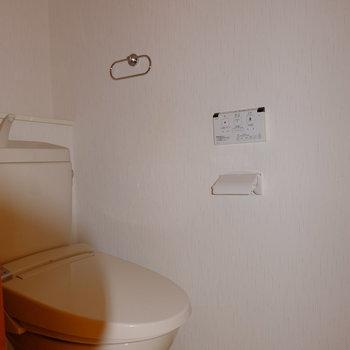 といれはウォシュレット付きで広々個室*フラッシュ撮影です。(※写真は2階の同間取り別部屋のものです)