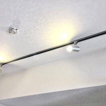 お部屋を照らすのはスタイリッシュなスポットライト。