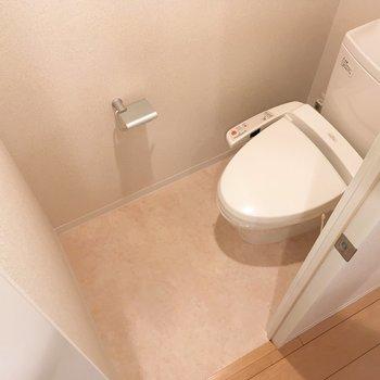トイレのスペースも十分かな。収納棚もありますよ。