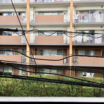 眺望は道を挟んでお隣のマンション。
