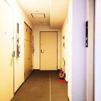 共用廊下。キレイです。