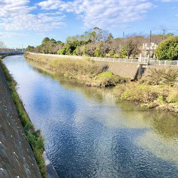近くには引地川が流れていて、川沿いに15分ほど歩けば海に到着ですよ