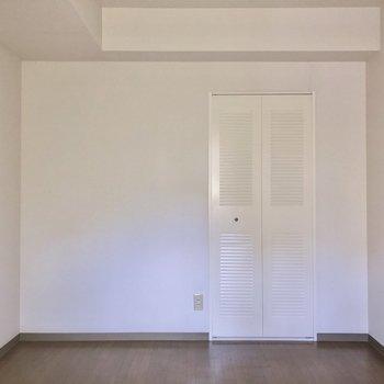 【洋室5.3帖】大きめの収納もちゃんとついています