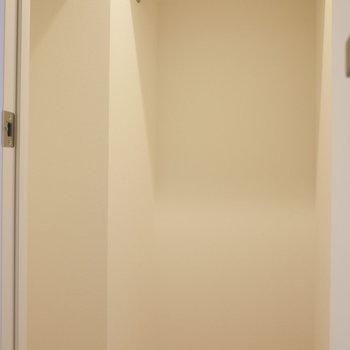 【4.2帖洋室】こちらも収納はウォークイン。