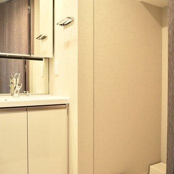 ちょうど良い大きさの洗面台※写真は7階の反転間取り別部屋のものです