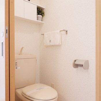 トイレ後方には便利な棚がありました