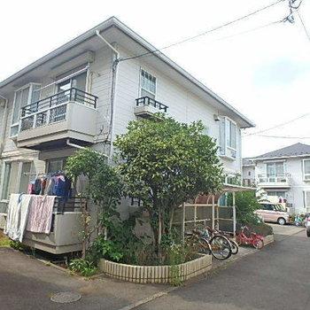 武蔵小金井19分アパート