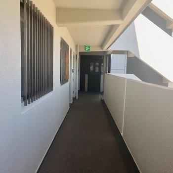 廊下も清潔感があります