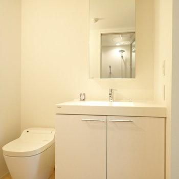 サニタリーとトイレは同室です。