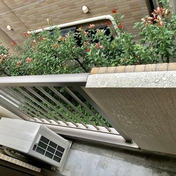 ちょっとした植物なんかを置きたい※写真は2階の反転間取り別部屋のものです
