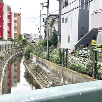 お家の周りには川が流れていて自然豊かな土地です