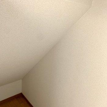 おお!秘密基地感溢れる空間が横に広がっていました。※写真はクリーニング前のものです。
