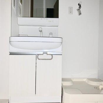 脱衣所には洗面台と洗濯機と