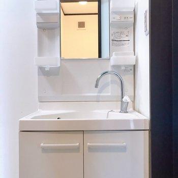 独立洗面台。蛇口がかわいい〜