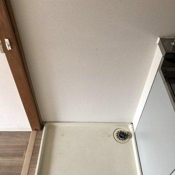 キッチン横に洗濯パンがあります。