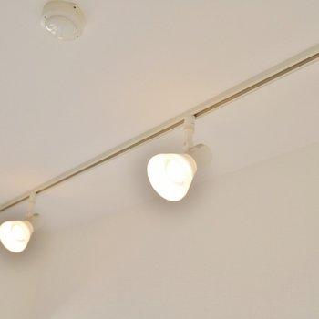 照明はダウンライト。※写真は1006号室のものです。