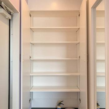 半分シューズ入れ、半分本棚。って使えそうなくらいの大きさだな。
