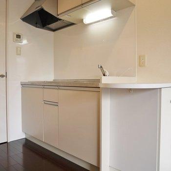 カウンター付のキッチン。※写真は同タイプの別室。