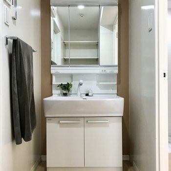 スタイリッシュな洗面台(※写真の小物は見本です)
