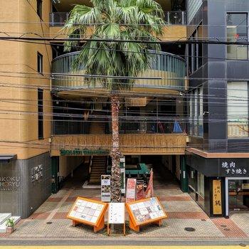 眺望は、お向かいの商業施設!ヤシの木がいいよねーっ!!